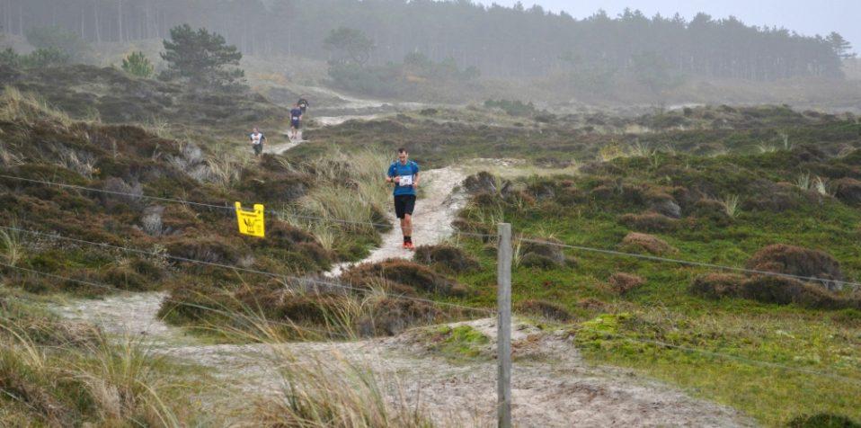 De duinen dichtbij Hargen aan Zee
