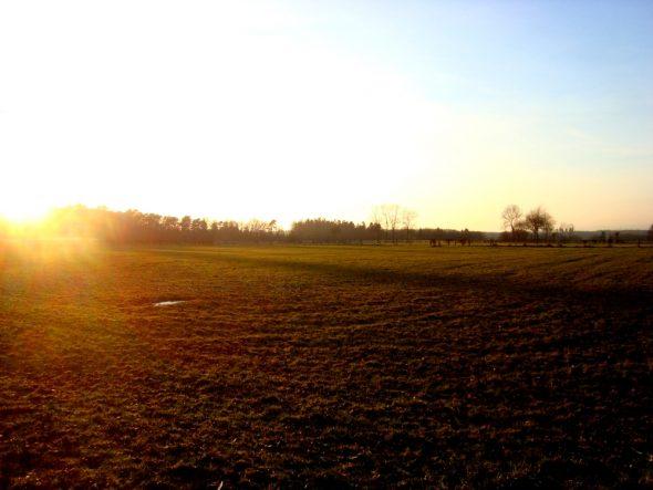 Het laatste zonlicht