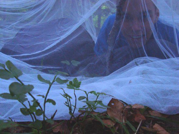 Slapen onder een muskietennetje